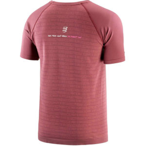 Футболка Compressport Training Tshirt SS - Mont Blanc 2020